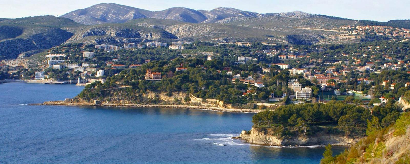 societe anti cafards carnoux en provence