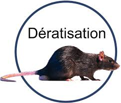 Dératisation Sospel