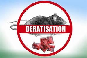 Dératisation Bouc-Bel-Air
