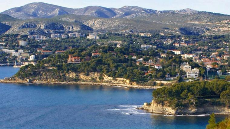 punaise lit carnoux en provence