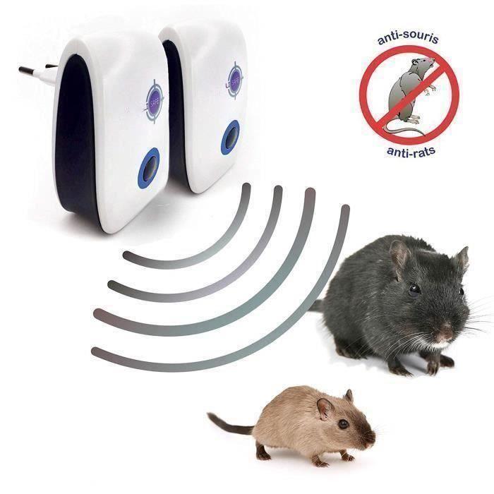 appareil ultrasons rats