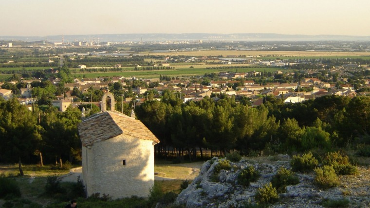 societe anti cafards fare oliviers
