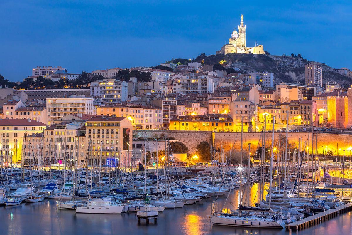 societe anti cafards aix en provence